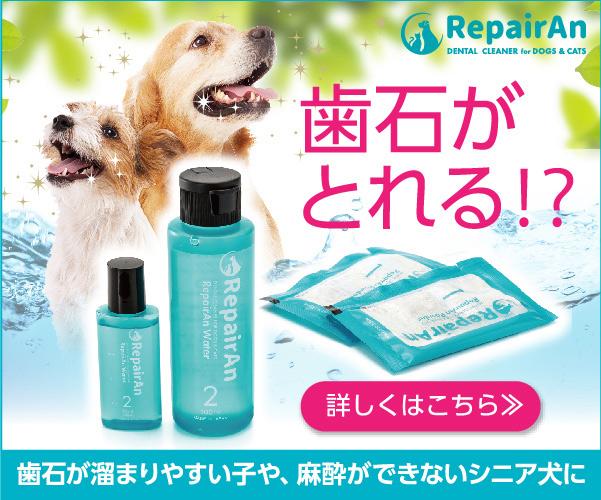 ペット業界で話題の製品 RepairAn(リペアン)